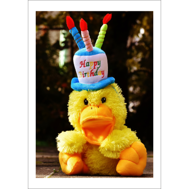 Birthday Card Cute Fluffy Toy Duck